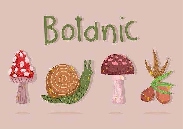 Set di cartoni botanici