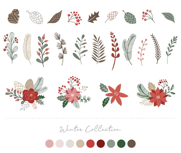 Elementi botanici di natale: fiori, foglie, uccelli e pigne isolati su sfondi bianchi.