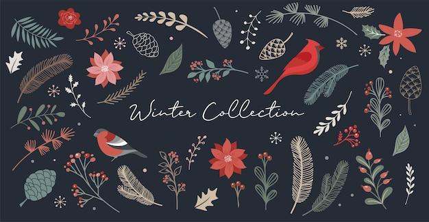 Natale botanico, elementi di natale, fiori invernali, foglie, uccelli e pigne isolati sui bianchi.