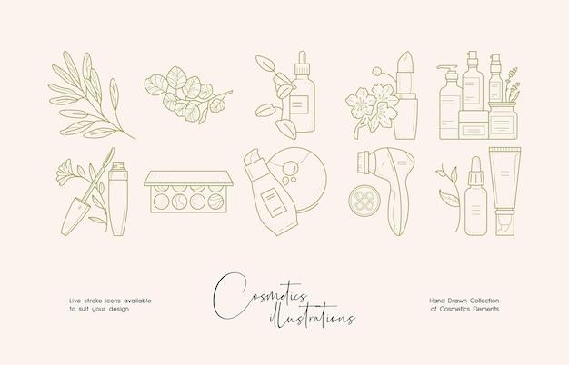Set di illustrazioni per cosmetici botanici per l'identità del marchio