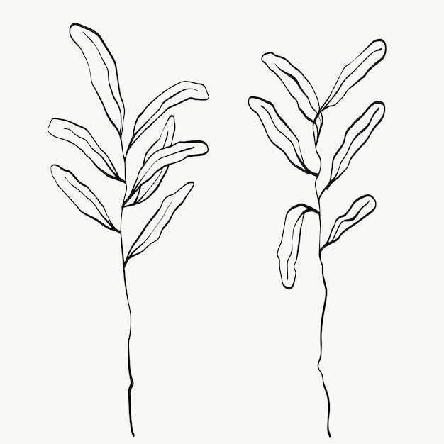 Foglie botaniche line art. linea di piante astratte moderne o minimali. perfetto per l'arredamento della casa come i poster. disegno di illustrazioni vettoriali.