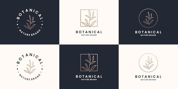 Collezioni di design del logo botanico, vegetale, naturale