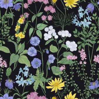 Modello senza cuciture botanico con eleganti fiori che sbocciano, infiorescenze ed erbe su sfondo nero
