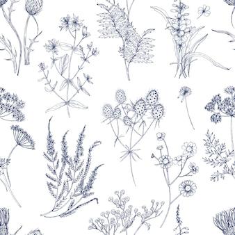 Modello senza cuciture botanico con erbe di prato, piante fiorite e fiori selvatici in fiore disegnati a mano con linee blu su sfondo bianco. illustrazione naturale in stile vintage per la stampa su tessuto.