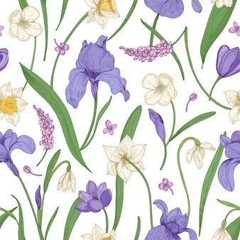Modello senza cuciture botanico con fiori che sbocciano stagionali su sfondo bianco.