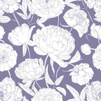Modello senza cuciture botanico con fiori di peonia teneri disegnati a mano con linee di contorno su sfondo viola.