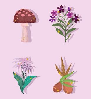 Fiori di vegetazione botanica