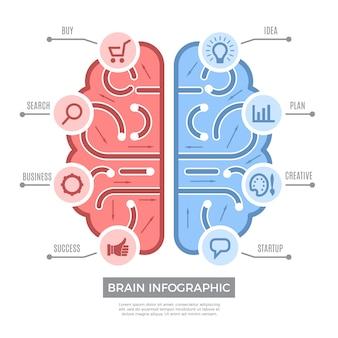 Cervello infografica. immagini concettuali di affari di simboli di apprendimento di pensiero concettuale con il posto per testo