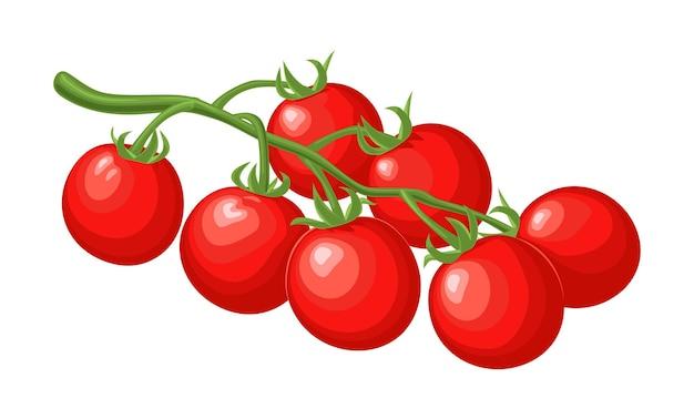 Ramo di pomodori isolato su sfondo bianco. illustrazione di colore piatto vettoriale.