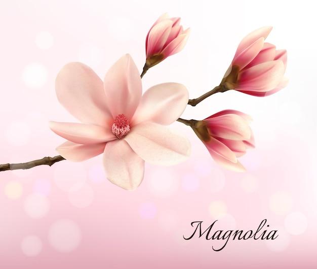 Ramo con due fiori di magnolia rosa. vettore.