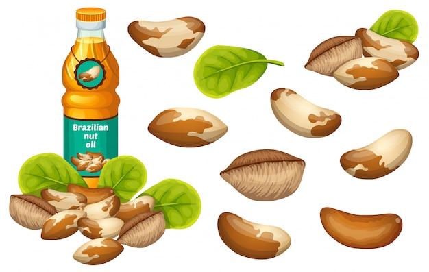 Olio di noce brasiliana, semi e foglie.