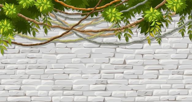 Muro di mattoni rami liana edera