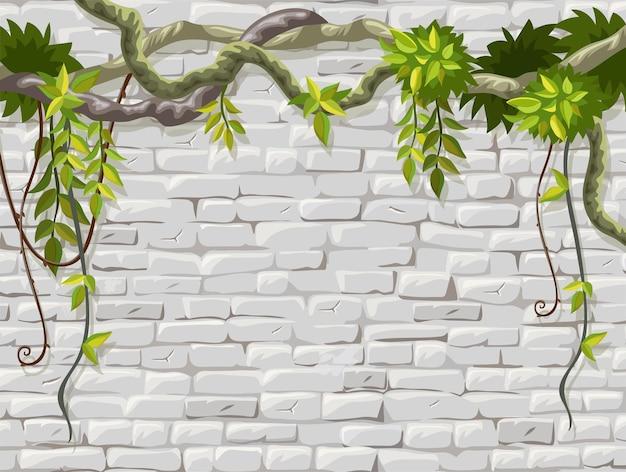 Muro in muratura con cornice di rami liana