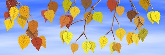 Banner autunnale luminoso, ramo di betulla autunnale sullo sfondo del cielo, illustrazione vettoriale