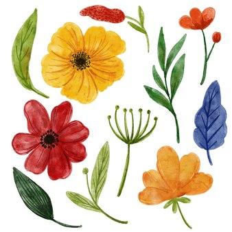 Illustrazione dell'acquerello di tema floreale luminoso e colorato