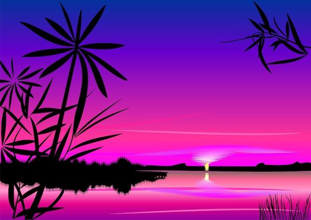 Luminoso tramonto colorato sul lago in primo piano sagome di piante