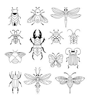 Insetti, insetti, farfalla, coccinella, scarabeo, coda di rondine, collezione di libellule.