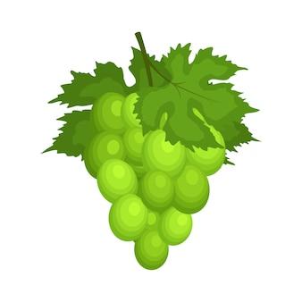 Grappolo d'uva verde con foglie. bacca fresca, frutta di materie prime.