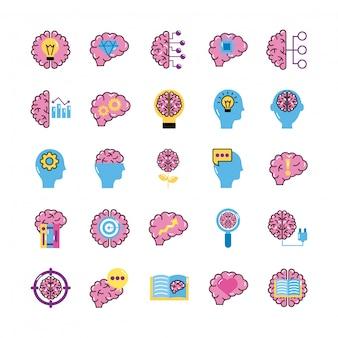 Fascio di organi cerebrali impostare icone