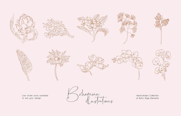 Fascio di disegni botanici dettagliati di fiori selvatici in fiore collezione di piante disegnate a mano Vettore Premium