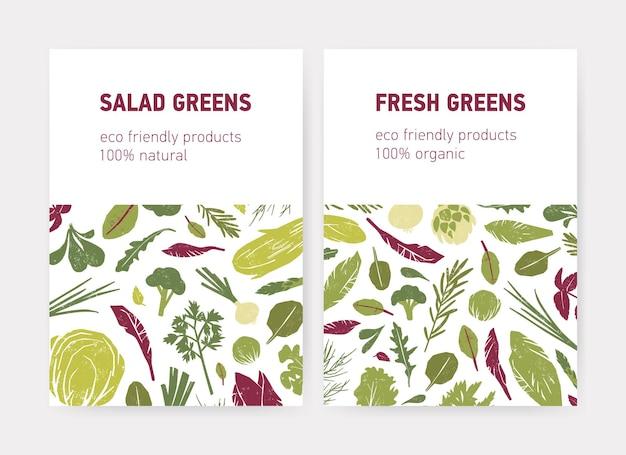 Pacchetto di modelli di volantini o poster con verdure verdi, foglie di insalata fresca, erbe aromatiche e posto per il testo su sfondo bianco. illustrazione vettoriale piatta per la pubblicità di prodotti ecologici.