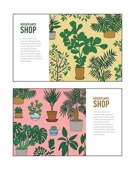 Pacchetto di modelli di banner orizzontali con piante d'appartamento che crescono in vasi e posto per il testo. io