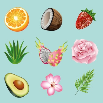 Un fascio di nove frutti e piante tropicali ha messo le icone nell'illustrazione blu della priorità bassa