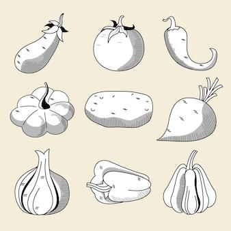 Pacchetto di nove verdure cibo sano impostare icone