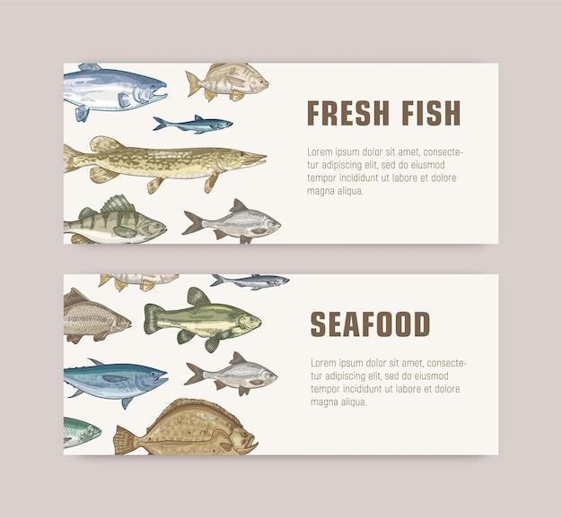 Pacchetto di modelli di banner web con pesci che vivono in mare, oceano o stagni di acqua dolce e posto per il testo