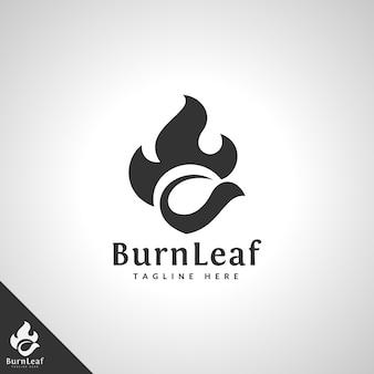 Modello di logo foglia in fiamme