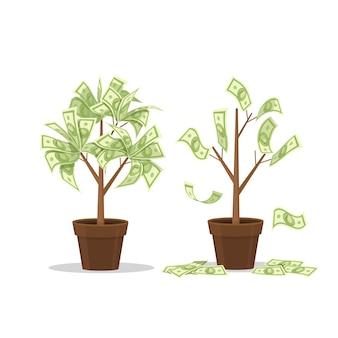 Donna di affari che raccoglie contanti dall'albero dei soldi