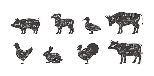 Schema macellaio schema parte animale impostato. tagli di carne di montone, agnello, maiale, anatra, pollo, tacchino, mucca, coniglio, toro. pezzo del corpo segnato per cucinare al ristorante, negozio di alimentari, mercato al dettaglio piatto vettore