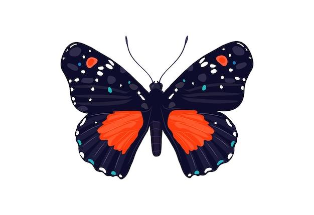 La farfalla. un bellissimo insetto. in stile piatto.