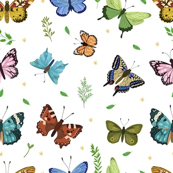 Modello senza cuciture della farfalla primavera ed estate