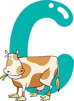 C per mucca
