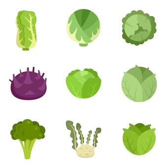 Set di icone di cavolo. set piatto di icone vettoriali cavolo isolato su sfondo bianco
