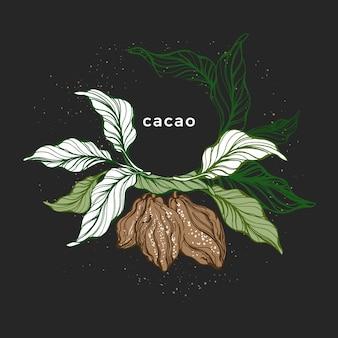 Ghirlanda di cacao. albero botanico disegnato a mano. alimenti dolci biologici
