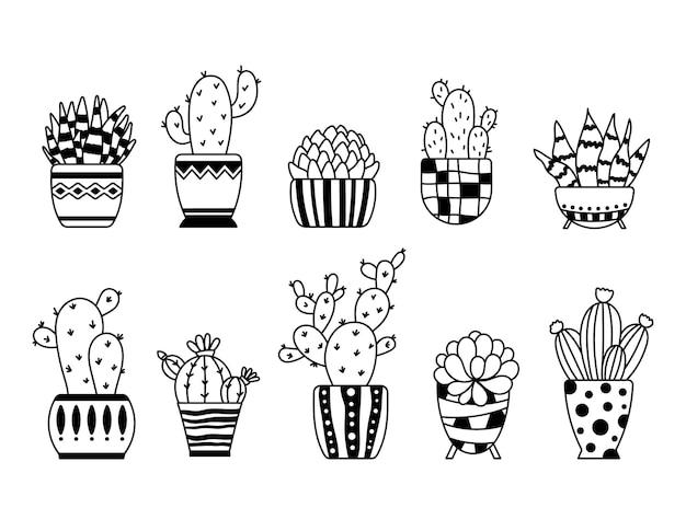 Cactus e succulente boho isolato clipart cactus in vaso grafica vettoriale piante da appartamento in vasi da fiori