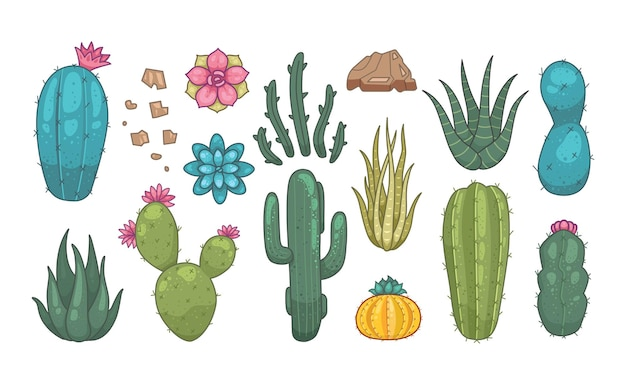Cactus e piante grasse icone vettoriali in stile cartone animato. home piante cactus isolati su sfondo bianco.