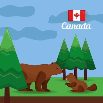 Orso e castoro del canada nell'illustrazione di vettore della foresta