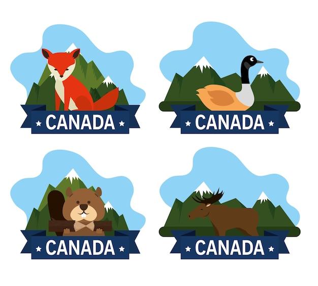 Gruppo di cultura canadese degli animali vector design illustrazione