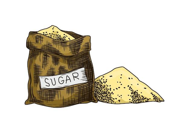 Zucchero di canna. prodotto dalla pianta della canna da zucchero. incisione di alimenti biologici naturali disegnati a mano