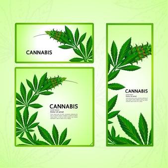 Sfondo di cannabis per l'illustrazione vettoriale del prodotto o della confezione