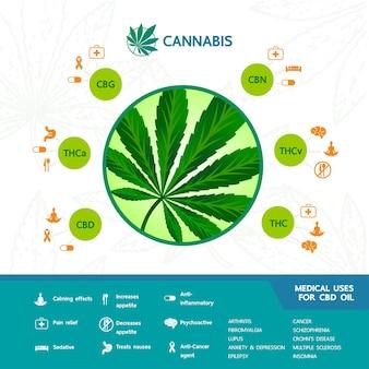 Benefici della cannabis per l'illustrazione vettoriale medica e sanitaria