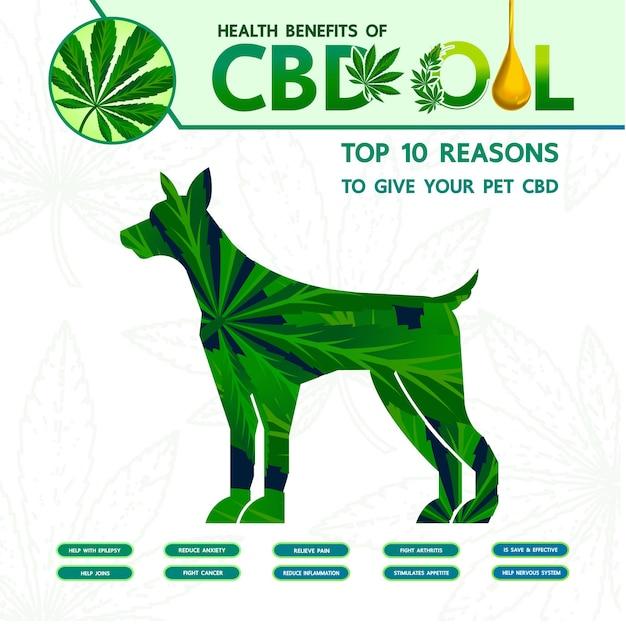 Benefici della cannabis per l'illustrazione vettoriale della salute degli animali domestici