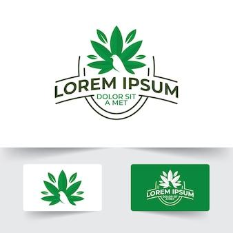 Modello di progettazione dell'icona della cannabis, illustrazione del segno della marijuana di canabis isolata su fondo bianco