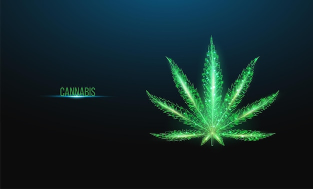 Foglia di cannabis. stile wireframe basso poli. il concetto di uso medico della marijuana, trattamento alternativo. abstract moderno 3d illustrazione vettoriale su sfondo blu scuro.