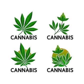 Cannabis per uso medico.