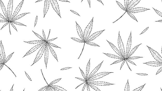 Modello di cannabis. foglie di marijuana, canapa disegnata a mano