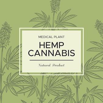 Sfondo di schizzo di cannabis. rami di canapa, piante cosmetiche e mediche, erba di marijuana per canne e bong, poster botanico vettoriale di ganja disegnato a mano